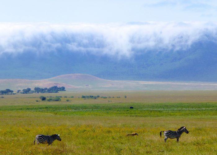 Ngorongoro Tanzanie